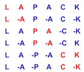 LAPACK logo